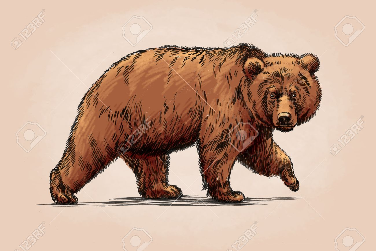 c7a8a570a 1,673 Russian Bear Stock Illustrations, Cliparts And Royalty Free ...