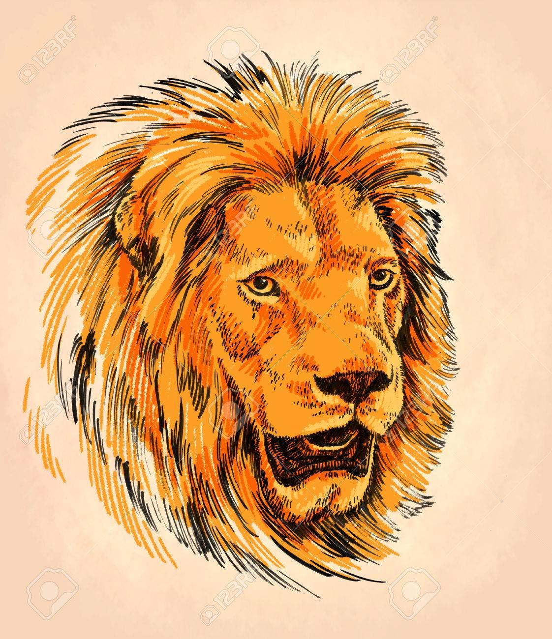 Couleur Peinture Au Pinceau D Encre Dessin Isole Lion Illustration