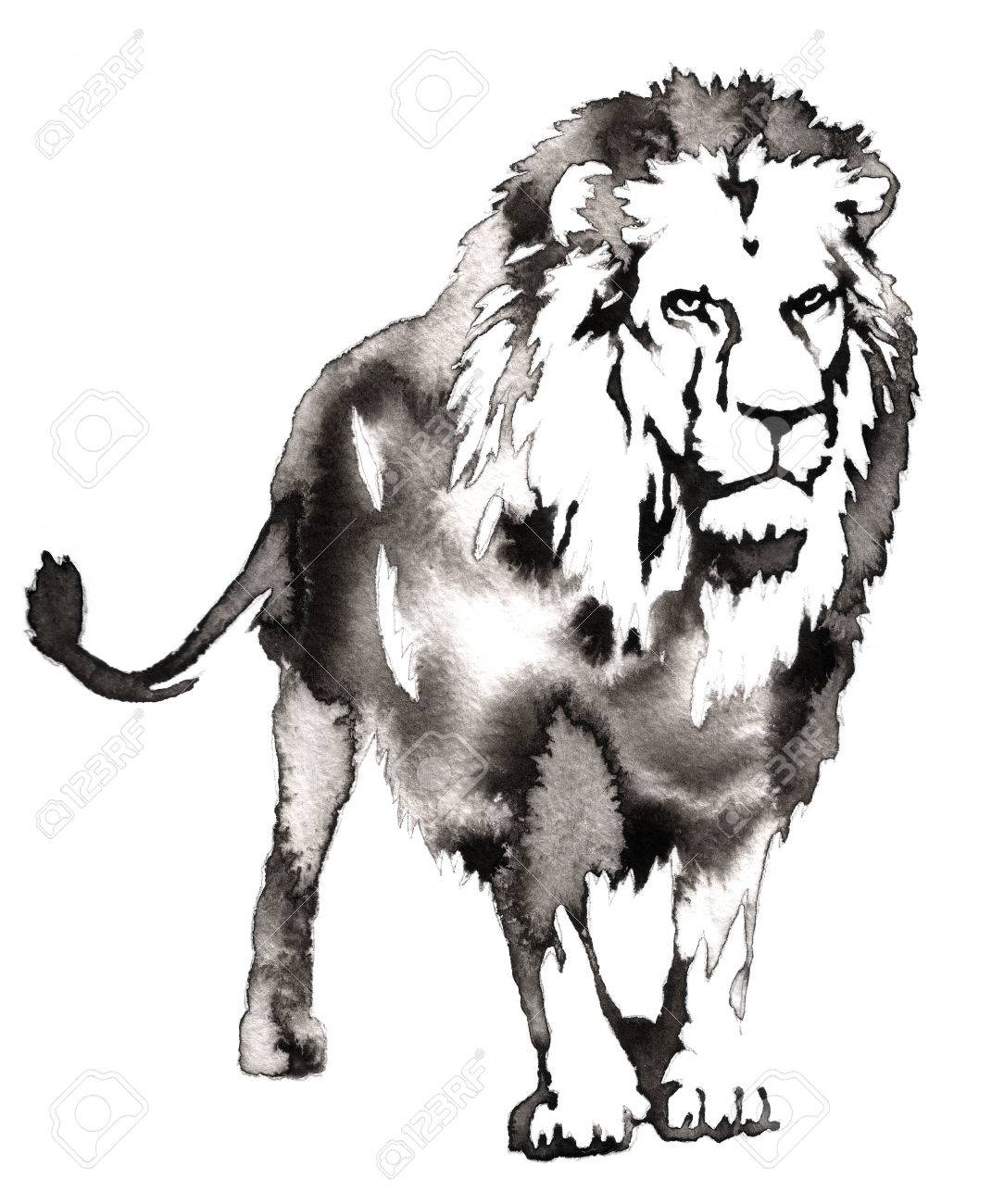 Black and white painting with water and ink draw lion illustration stock illustration 59716281