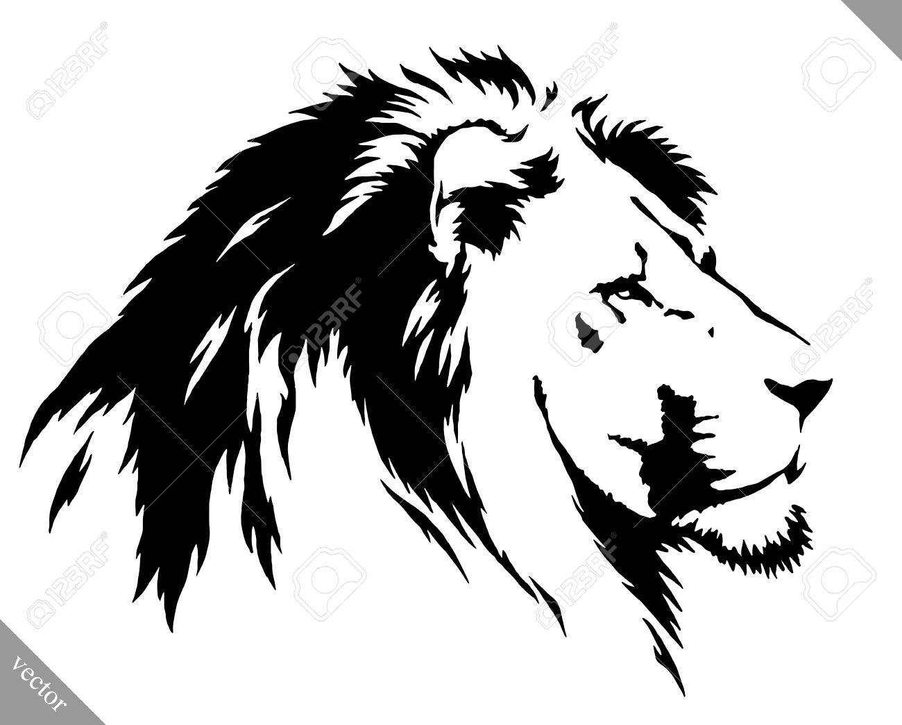 Black and white linear draw lion vector illustration stock vector 59716285