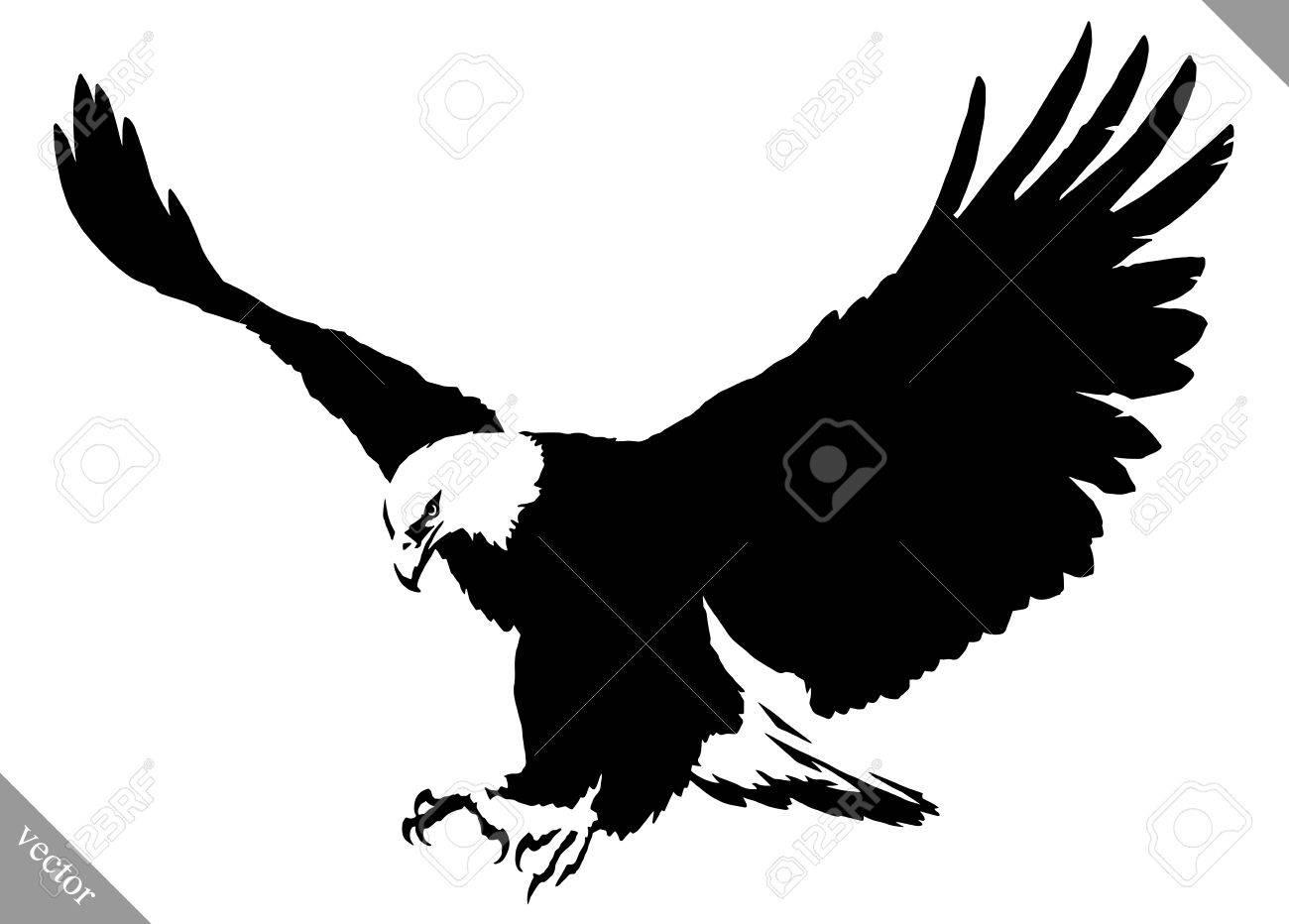 Noir Et Blanc Peinture Linéaire Dessiner Aigle Vecteur Illustration Oiseau