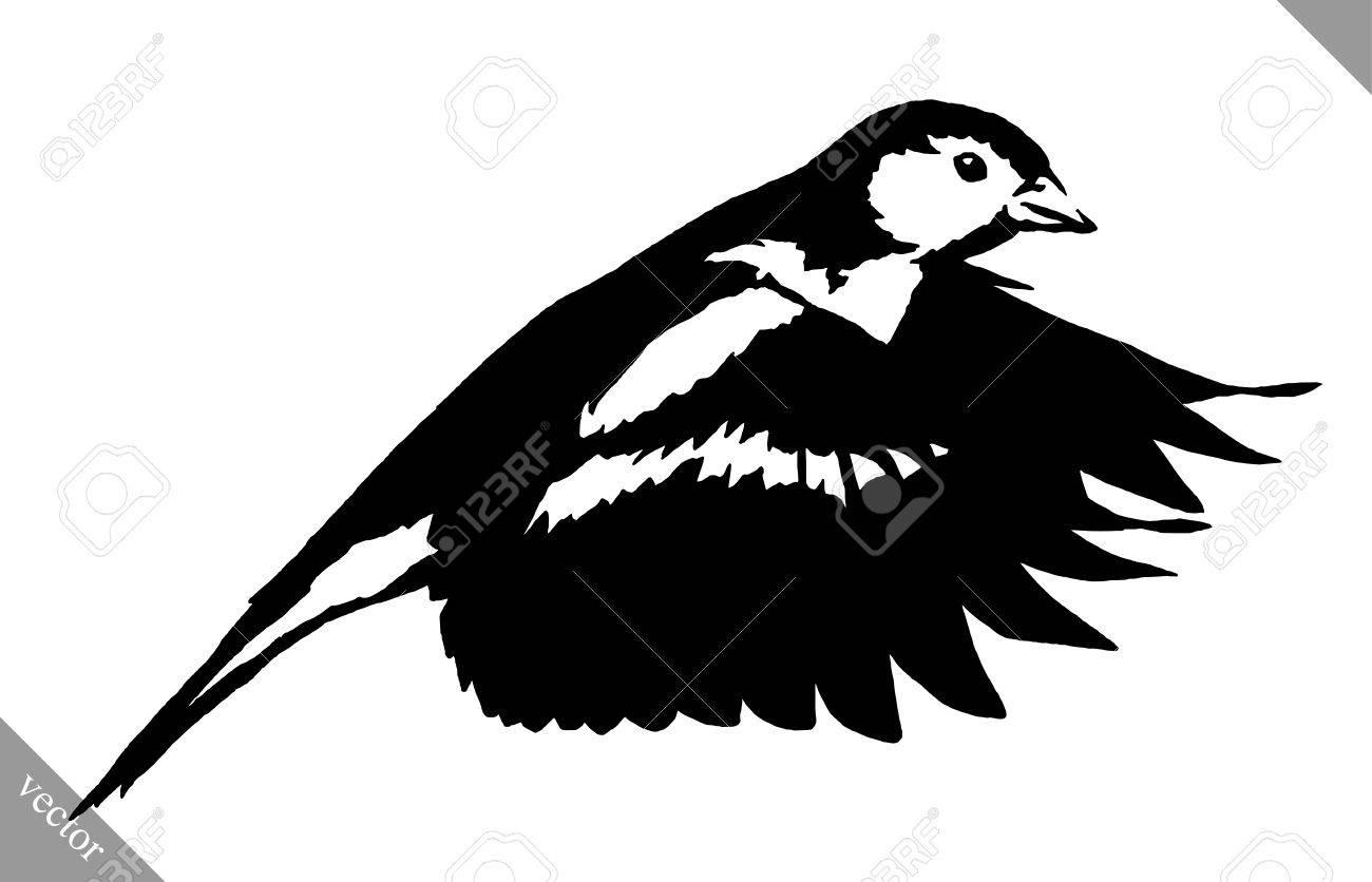 Noir Et Blanc Peinture Linéaire Dessiner Tit Illustration Oiseau