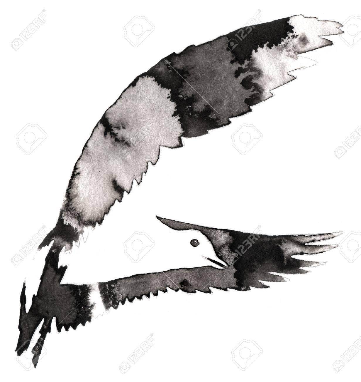 Peinture En Noir Et Blanc Avec Dessin à Leau Et à Lencre Illustration Doiseau De Mouette