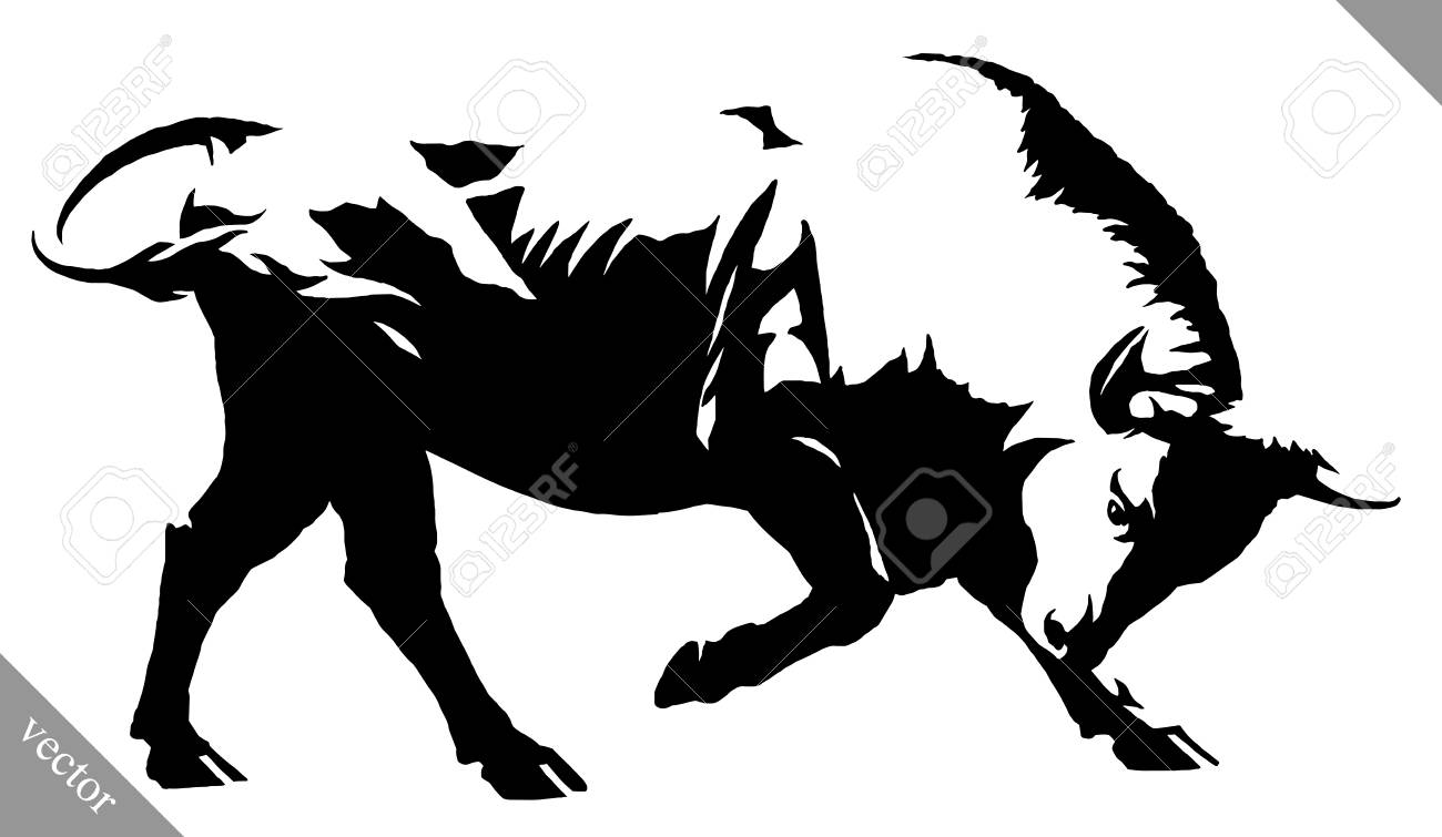 black and white linear draw bull illustration royalty free cliparts