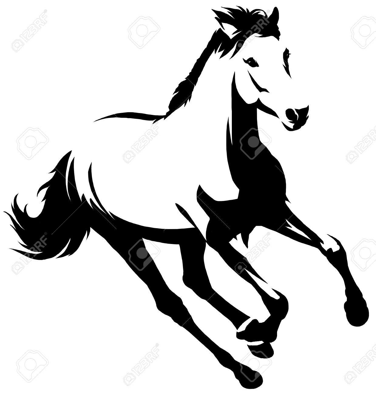 黒と白の線形描画馬イラスト の写真素材画像素材 Image 64229433