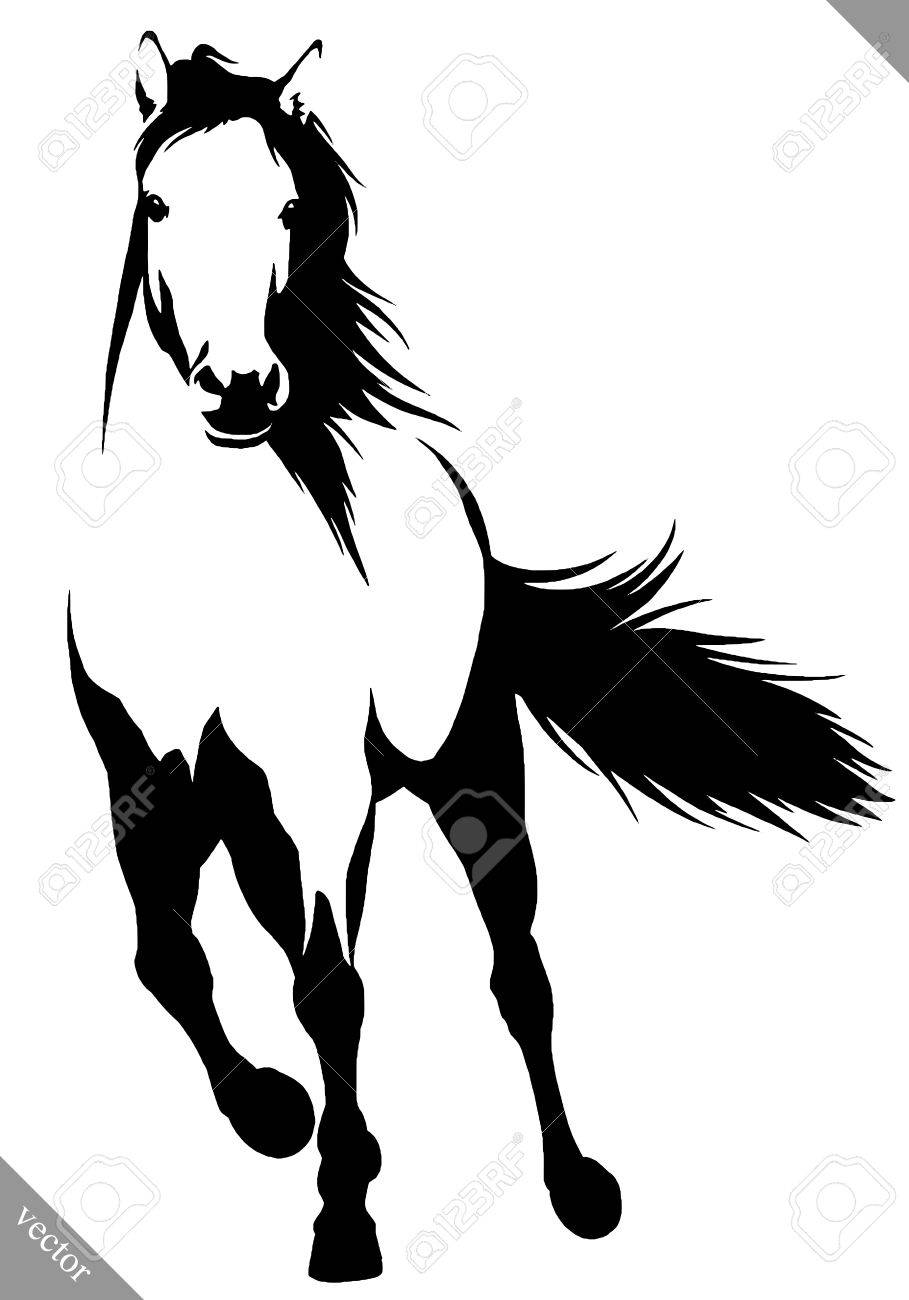 Black And White Linear Draw Horse Illustration Royalty Free Cliparts Vectors And Stock Illustration Image 64229438
