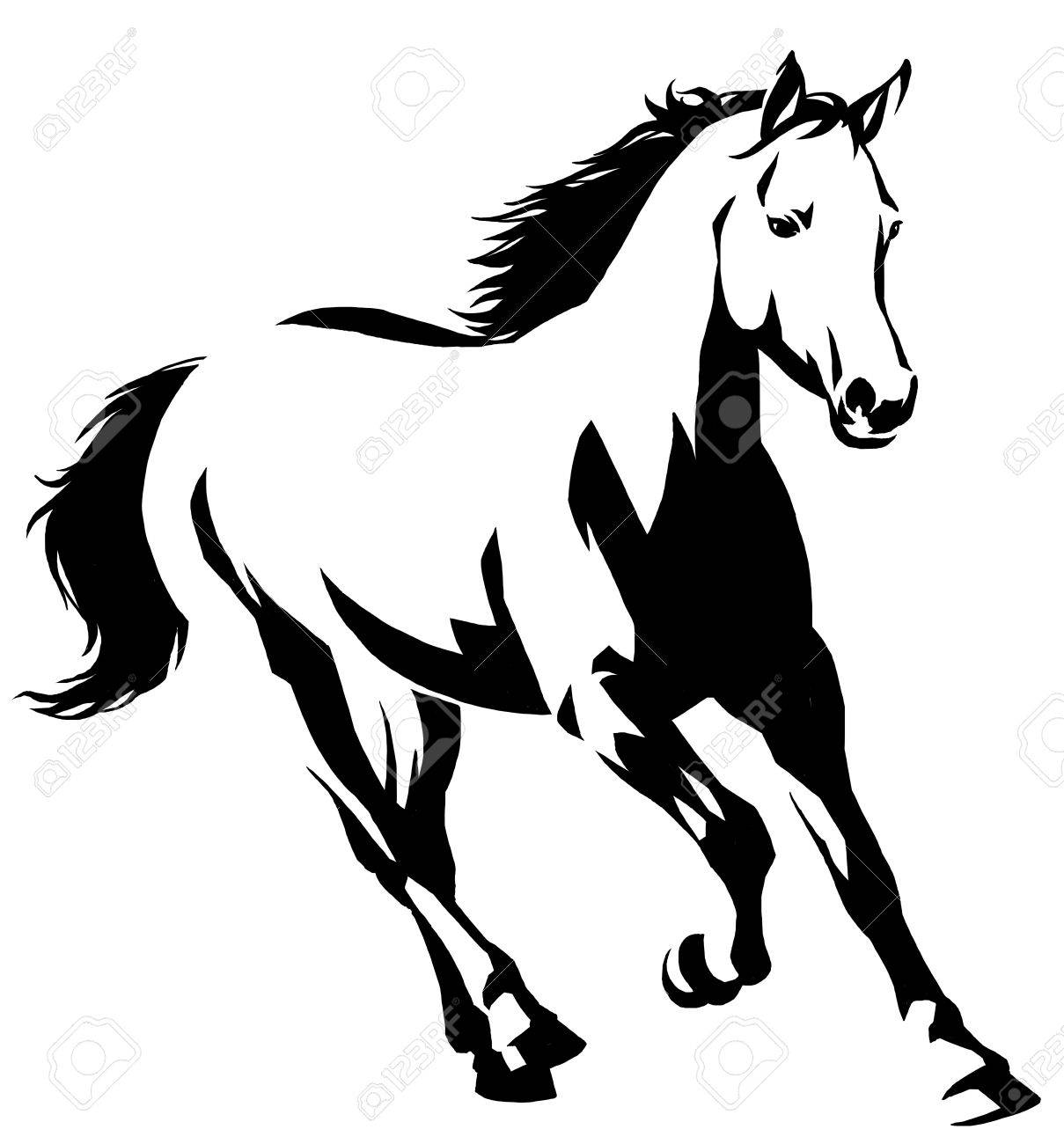 black and white linear draw horse illustration - 69447378