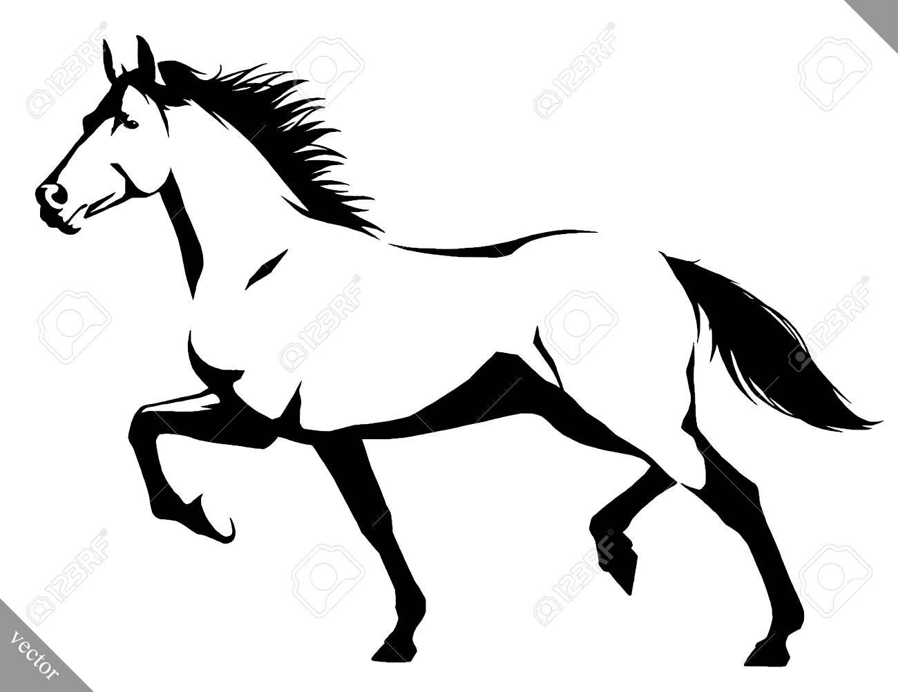 black and white linear draw horse vector illustration royalty free rh 123rf com horse clip art vector horse clip art vector