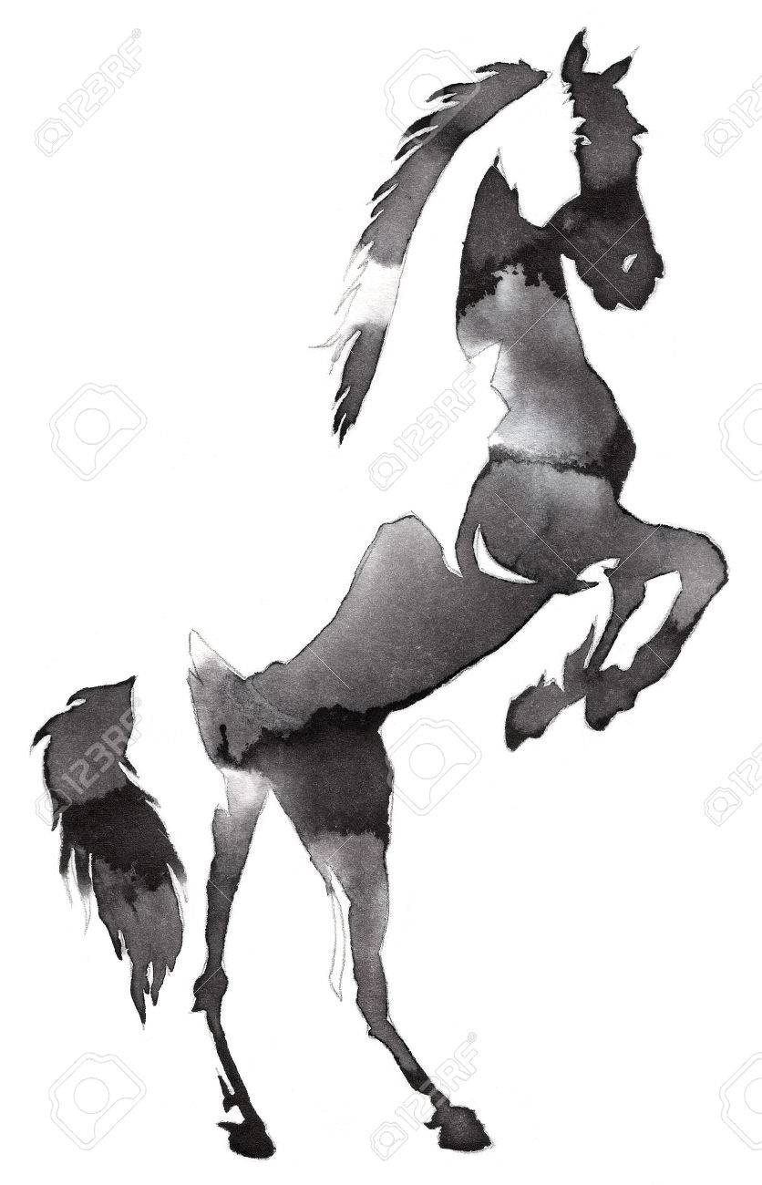 Black And White Painting With Water And Ink Draw Horse Illustration Stock Photo Picture And Royalty Free Image Image 69448058
