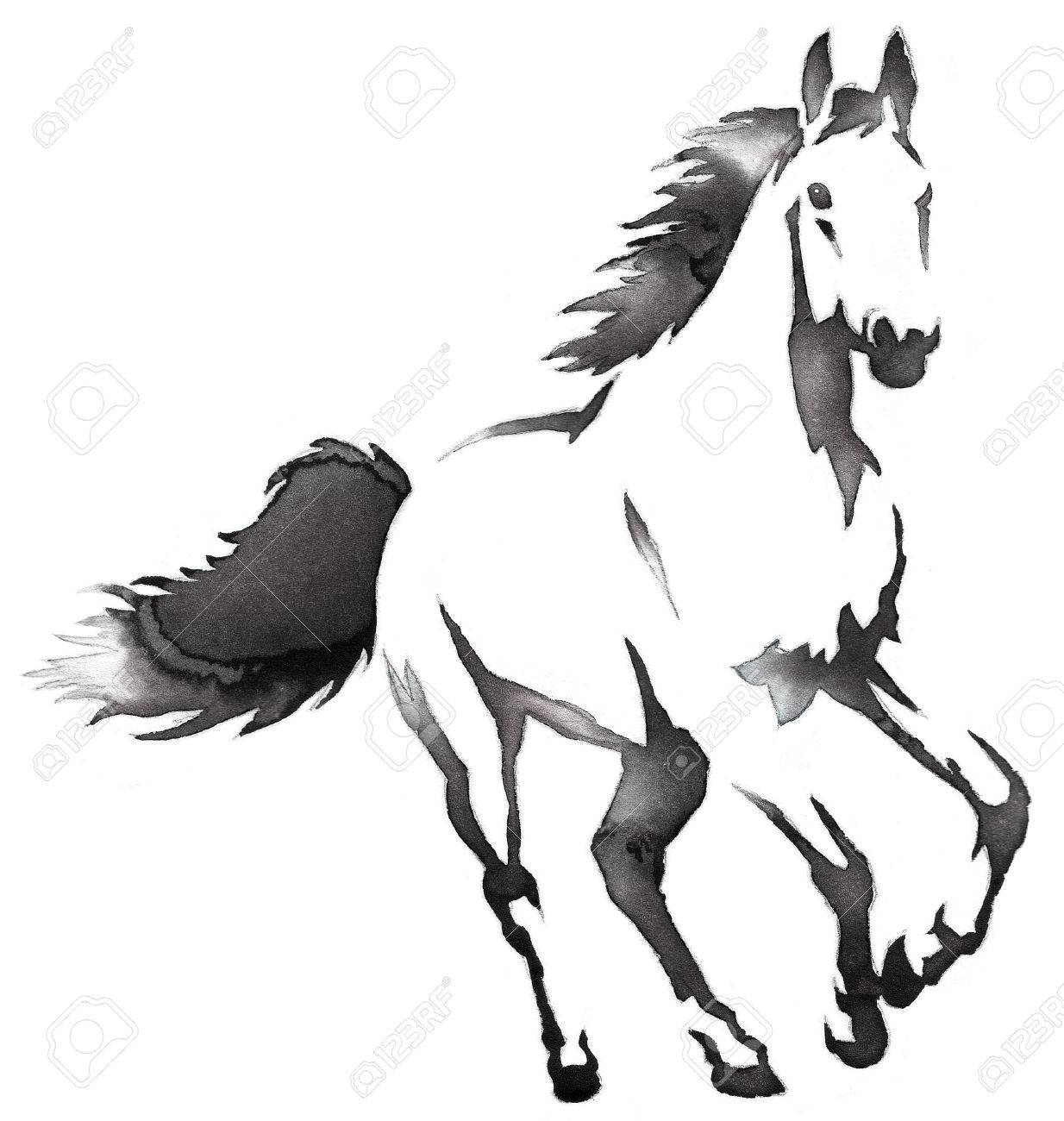 Black And White Painting With Water And Ink Draw Horse Illustration Stock Photo Picture And Royalty Free Image Image 69448096