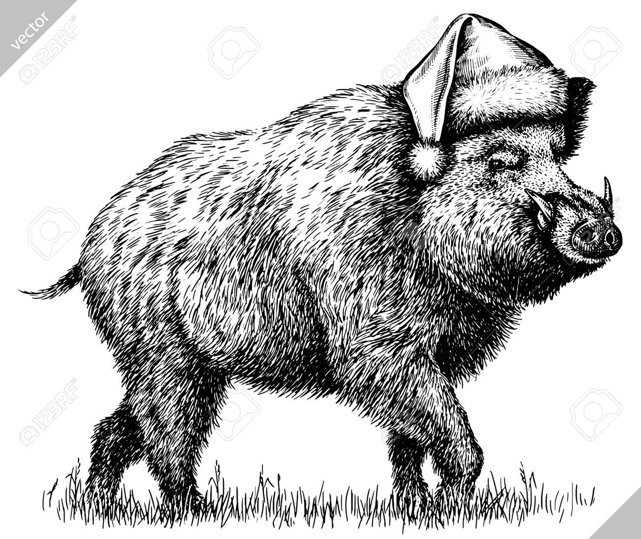 black and white engrave isolated pig vector illustration - 155802127
