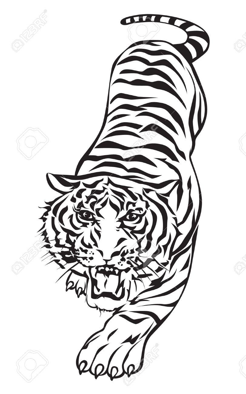 Tiger walking design. - 16040463