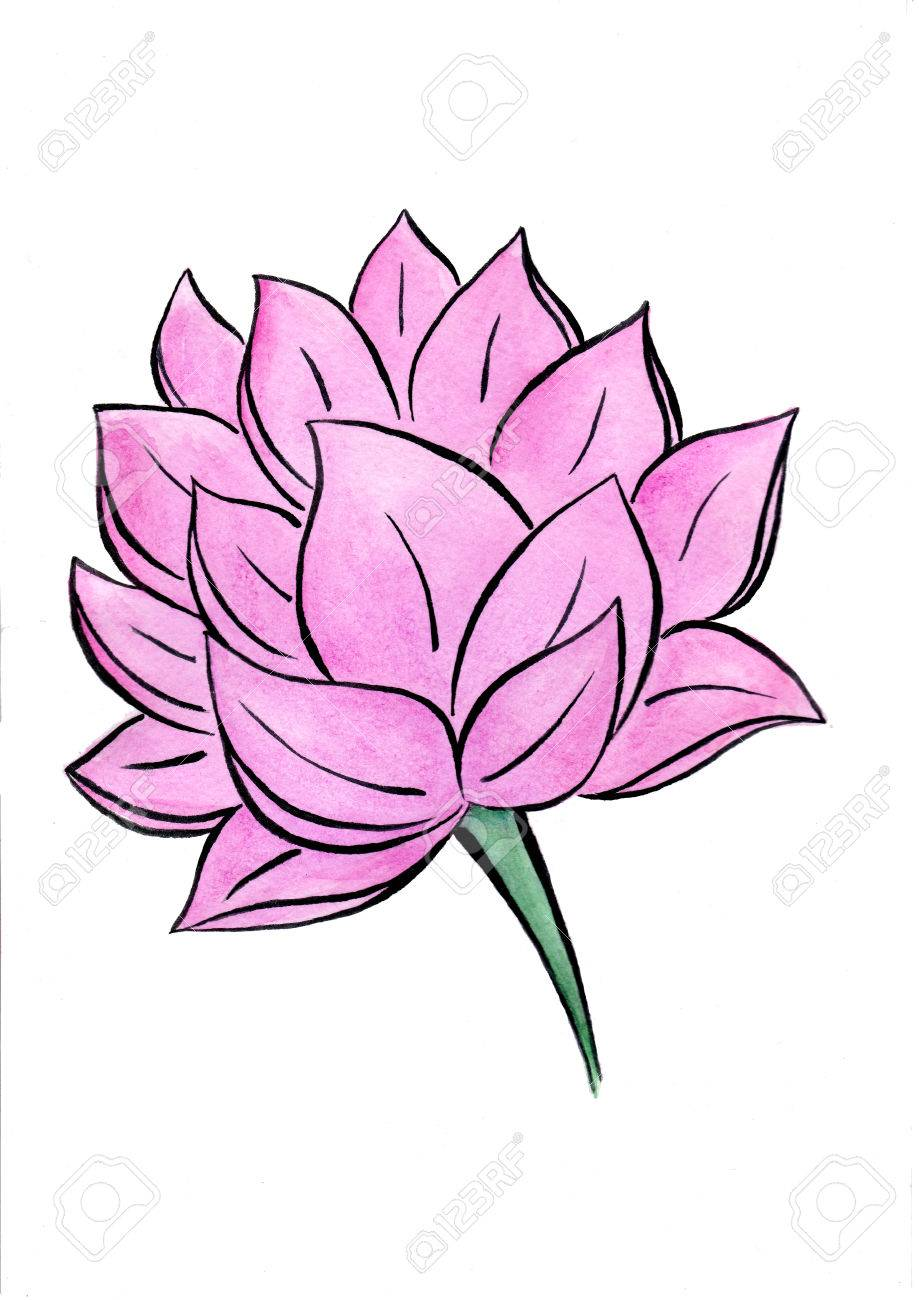Lotus flower watercolor hand drawn painting stock photo picture and lotus flower watercolor hand drawn painting stock photo 82795148 mightylinksfo
