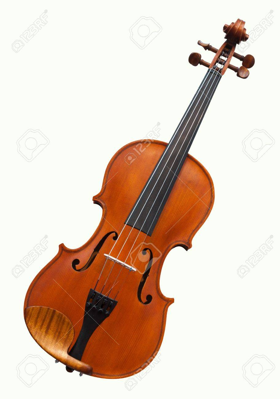 violins under the white background stock photo, picture and royalty