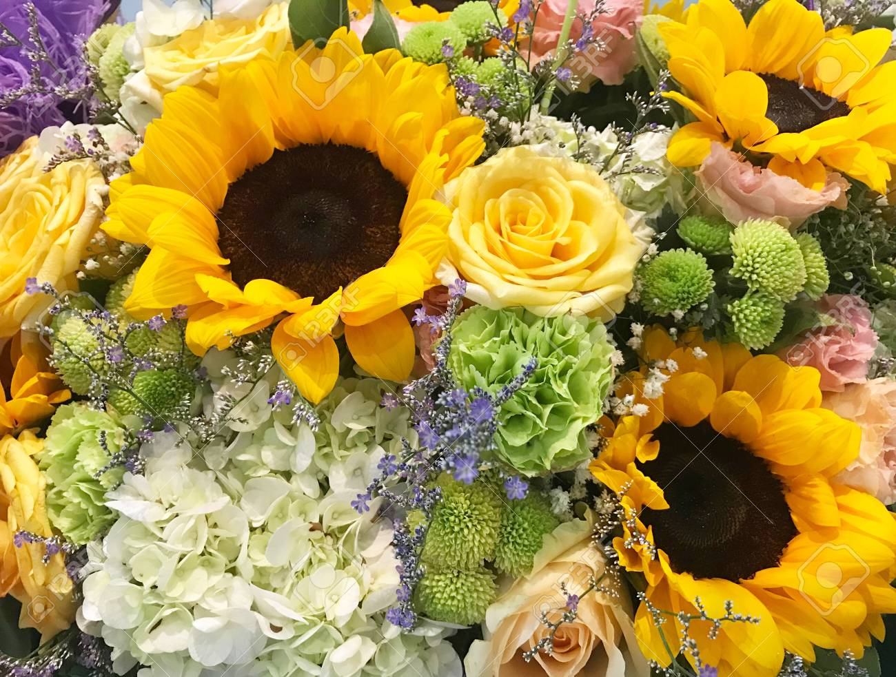 Close Up View Of Different Kind Of Beautiful Fresh Flower Bouquet ...