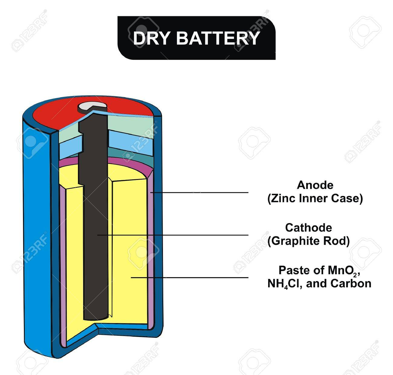 Cell battery diagram example electrical wiring diagram cell battery diagram images gallery ccuart