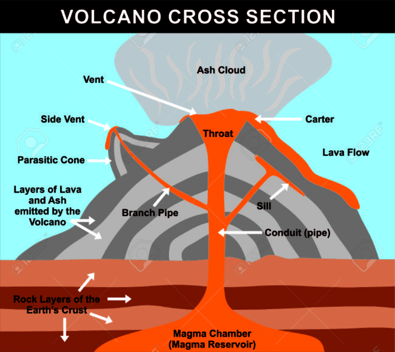 Volcano Cross Section Including All Parts Magma Chamber Reservoir Earth Diagram For Pinterest Vector Rock Layers Of Crust Conduit Branch Pipe Sill Side Vent Carter