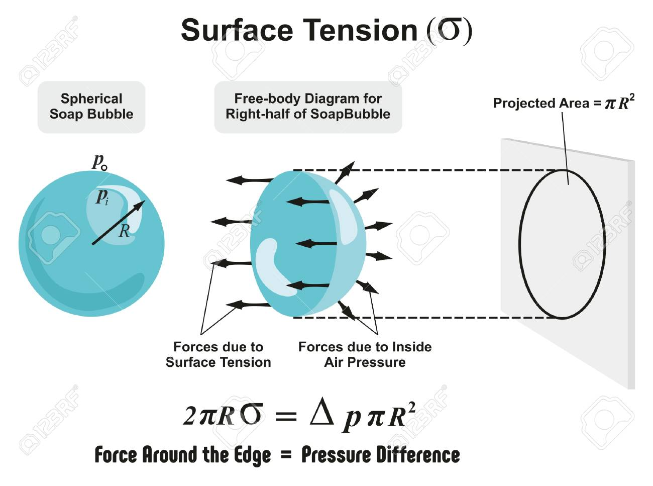 Surface Tension Physics Lesson of spherical soap bubble with all forces arrows and inside air pressure difference and projected area diagram for science education - 80631813