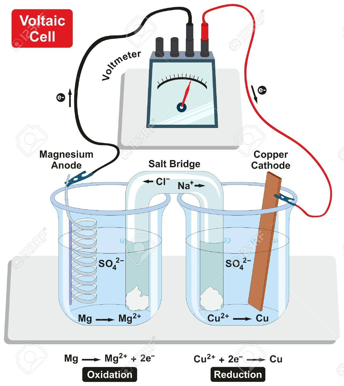 Voltaic galvanic cell with copper cathode and magnesium anode vector voltaic galvanic cell with copper cathode and magnesium anode salt bridge voltmeter and process of oxidation and reduction diagram for physics and ccuart Image collections