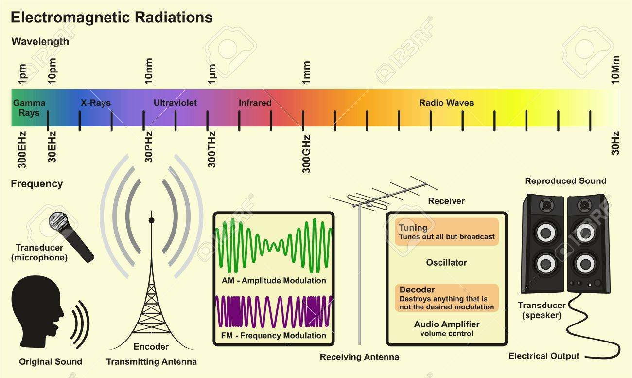 electromagnetic spectrum sources infographic diagram with radiations rh 123rf com Examples of Radio Waves Radio Wave Spectrum