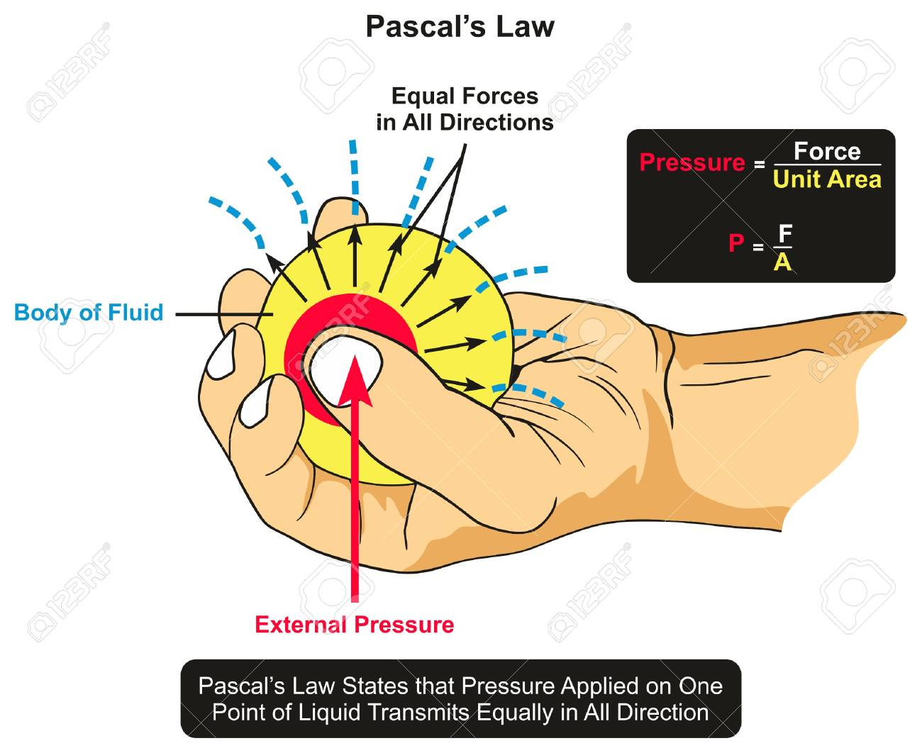 Pascals Law Infographic Diagram Showing An Example Of Body Of