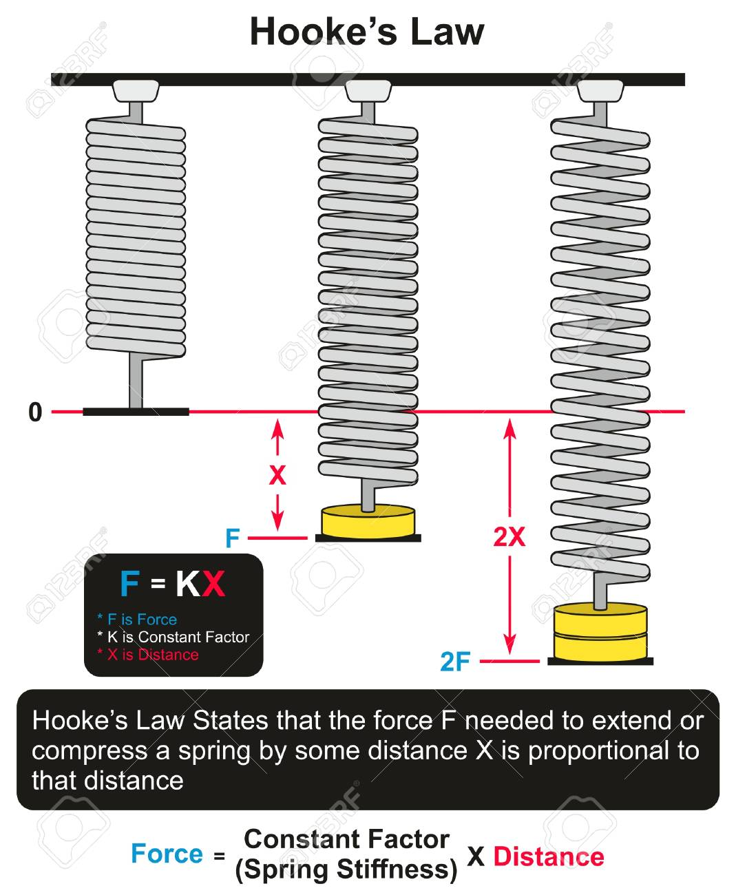 Hookes Law Infographic Diagram With An Example Of Three Springs