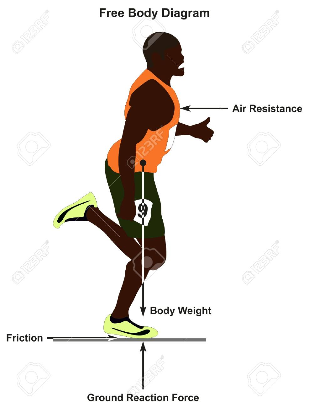 Peachy Free Body Diagram Showing A Man Running In Straight Line And Wiring Database Numdin4X4Andersnl