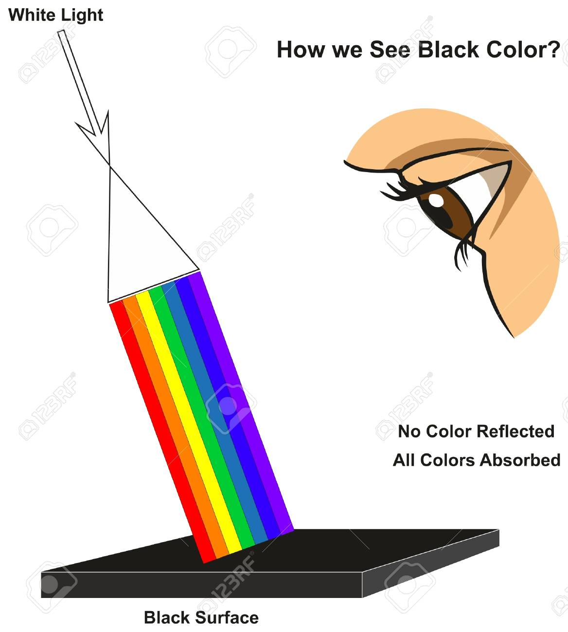 How we See Black Color infographic diagram showing visible spectrum light on surface and colors reflected or absorbed according to its color for physics science education - 87964151