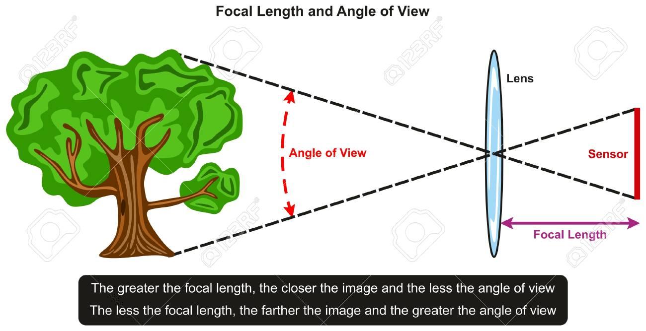 レンズの前にツリーの例でそれらと写真と物理の科学教育のためのセンサー