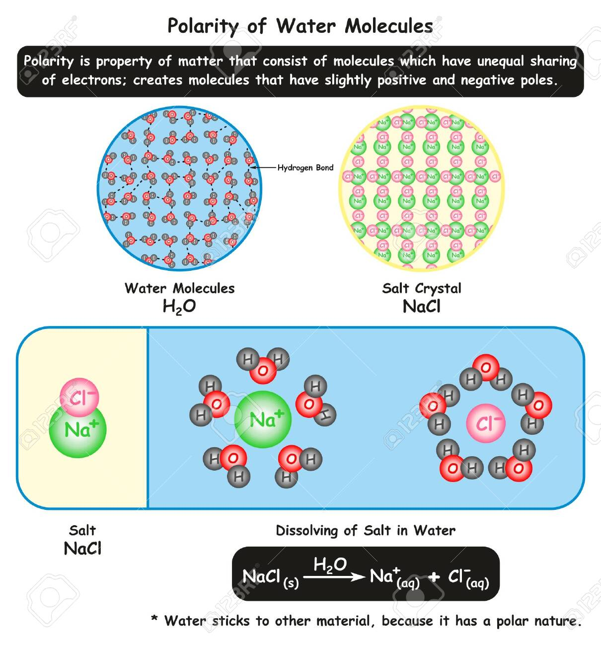 Polarity Of Water Molecules Infographic Diagram Showing Its Microscopic Royalty Free Cliparts Vectors And Stock Illustration Image 130476026