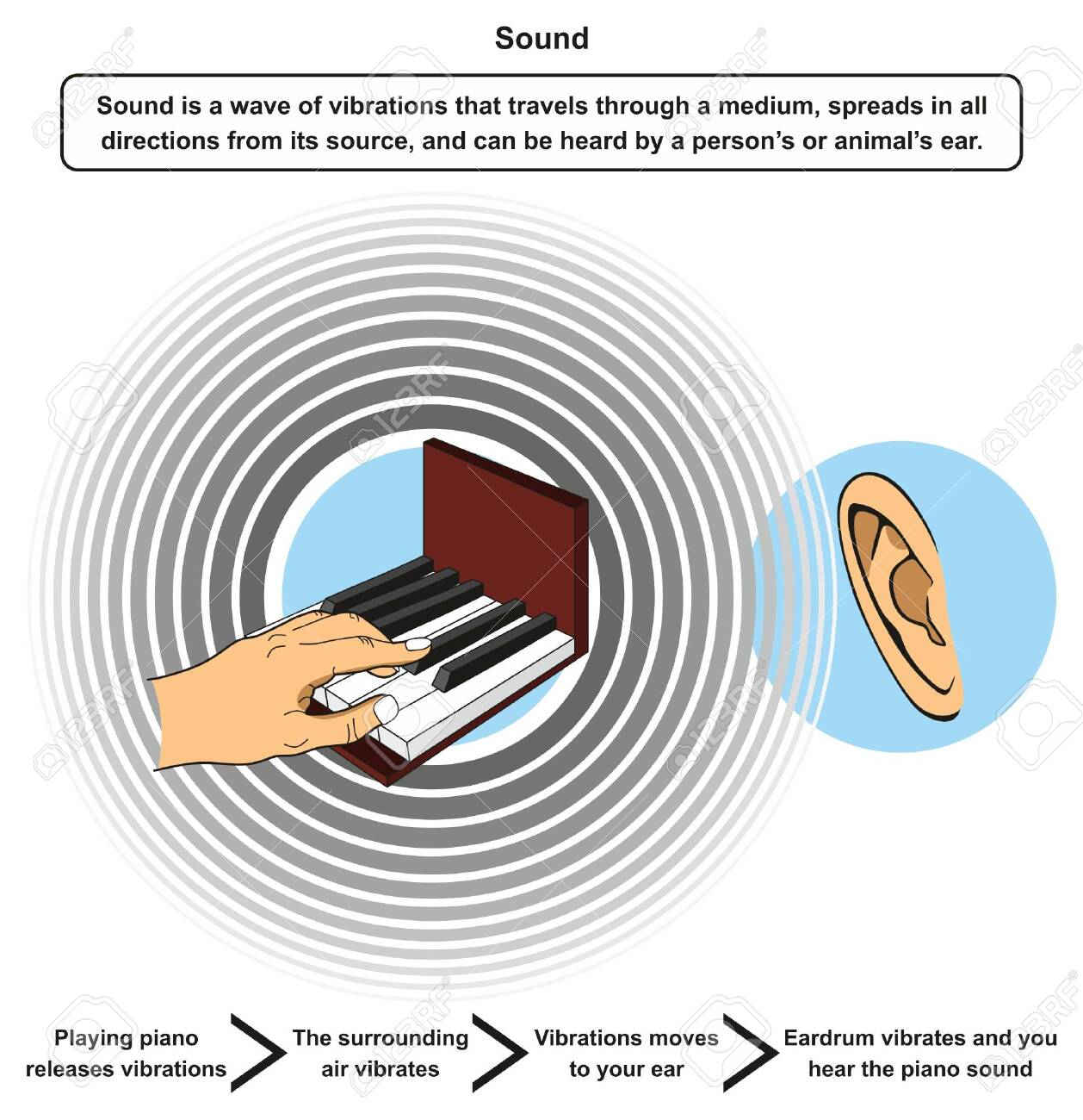 Sound Infographic Diagram Including Definition And Example Of Royalty Free Cliparts Vectors And Stock Illustration Image 130476251