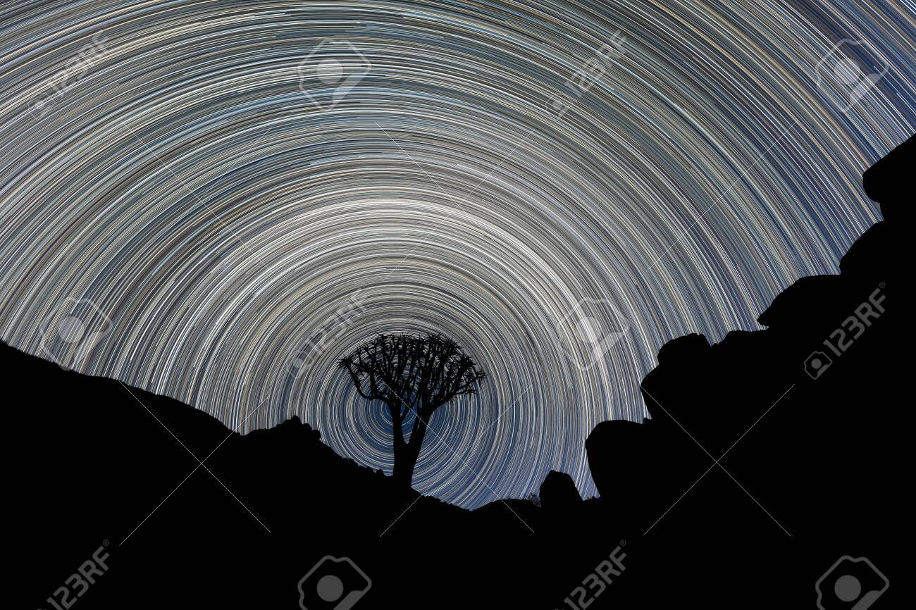 A beautiful night sky photograph of a silhouetted Quiver Tree framed by rocky mountains, with circular star trails creating a vortex around the tree, in the Richtersveld National Park, South Africa. - 142556572