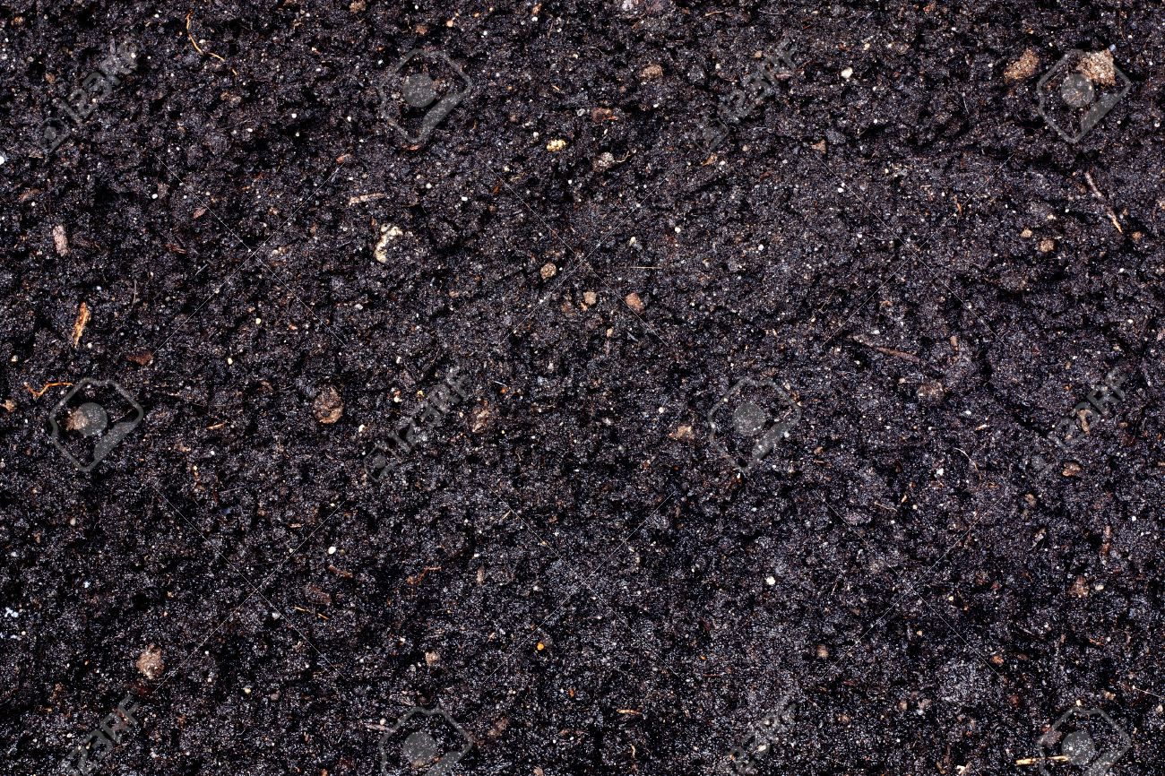 information on black soil Clay soil is composed of tiny particles that are hard and able to become easily compacted this compaction makes it difficult to plant or even shovel within the soil clay soil can feel like a curse to gardeners and can be difficult to plant, shovel or till when it is compacted, it is nearly.