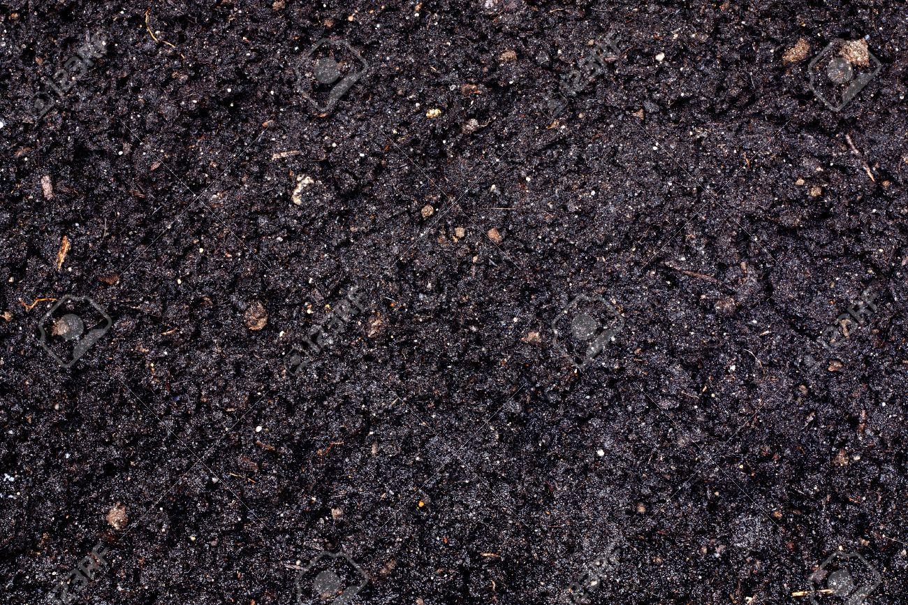 Soil texture Stock Photo - 13751583