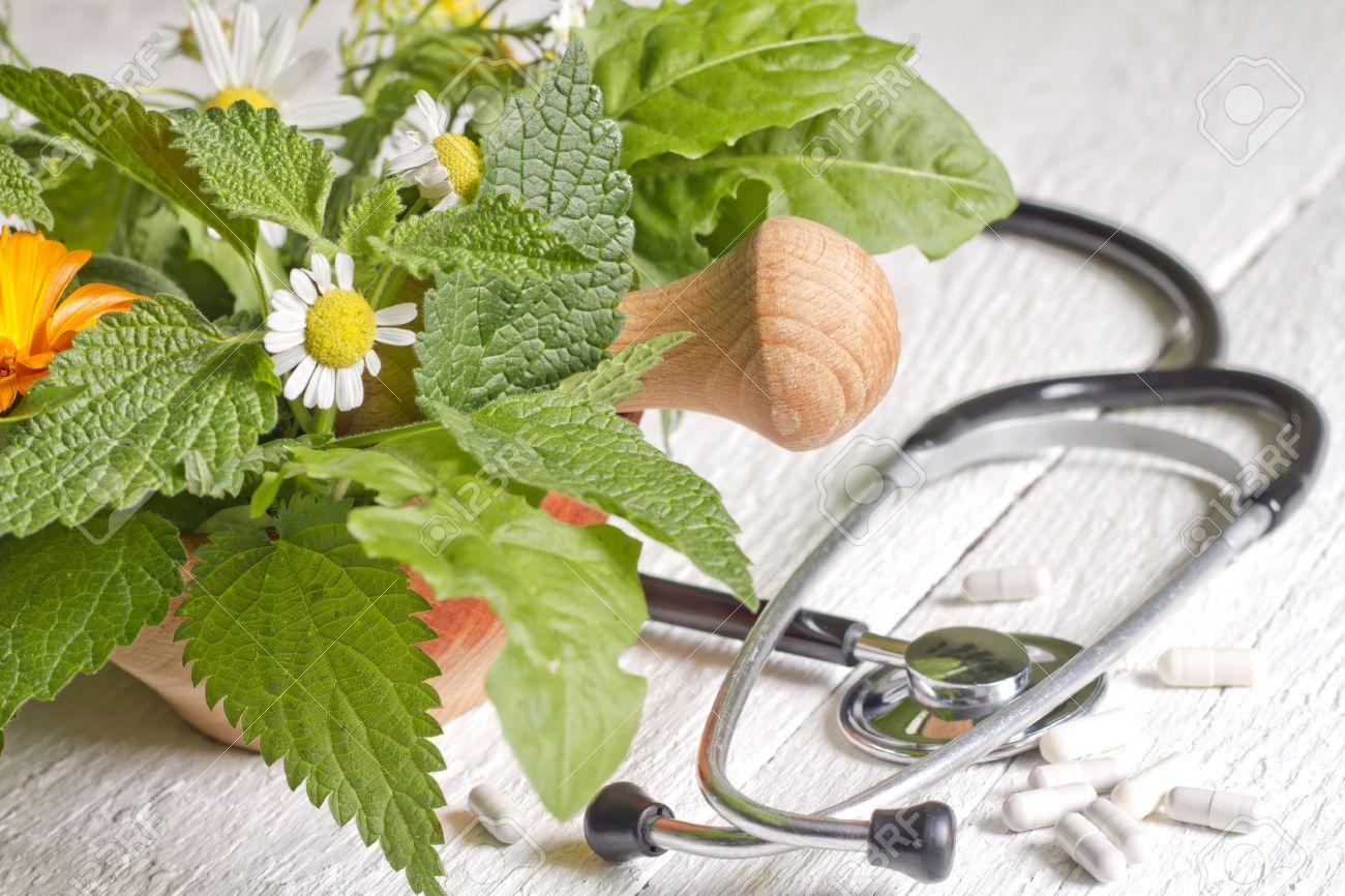 Fresh herb and stethoscope alternative medicine concept - 31915758