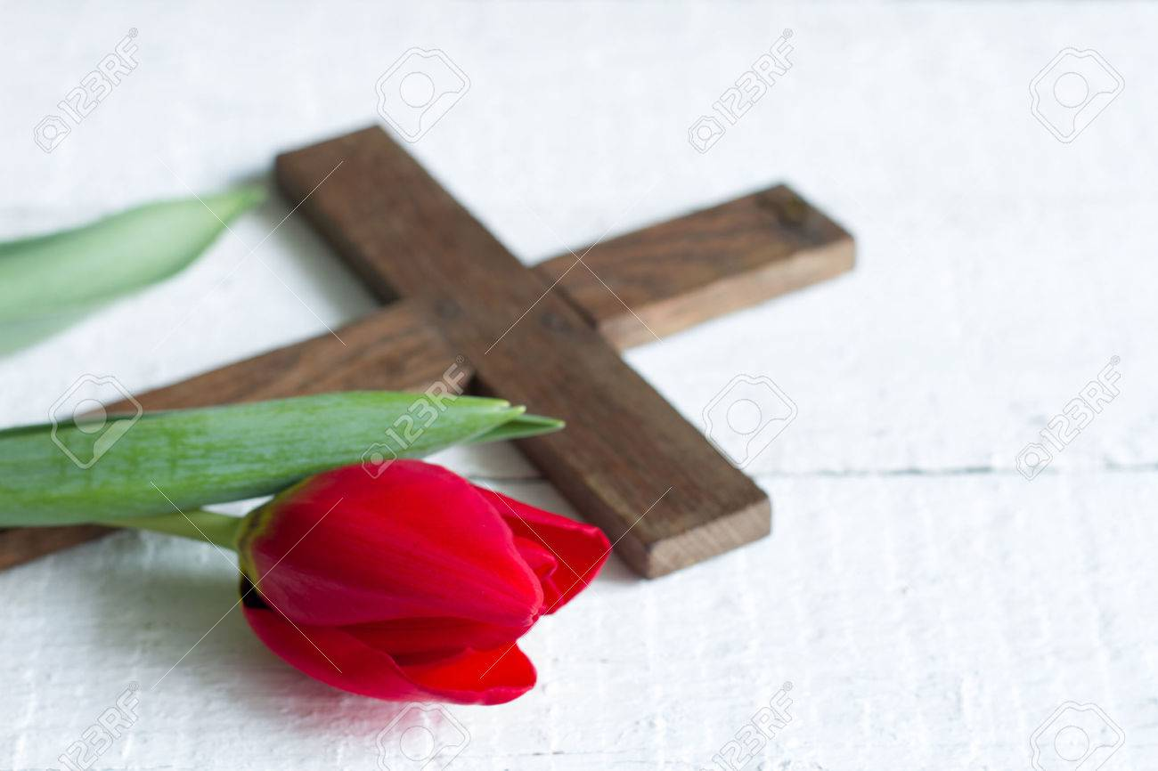 Easter red tulip and cross on white boards - 51758226