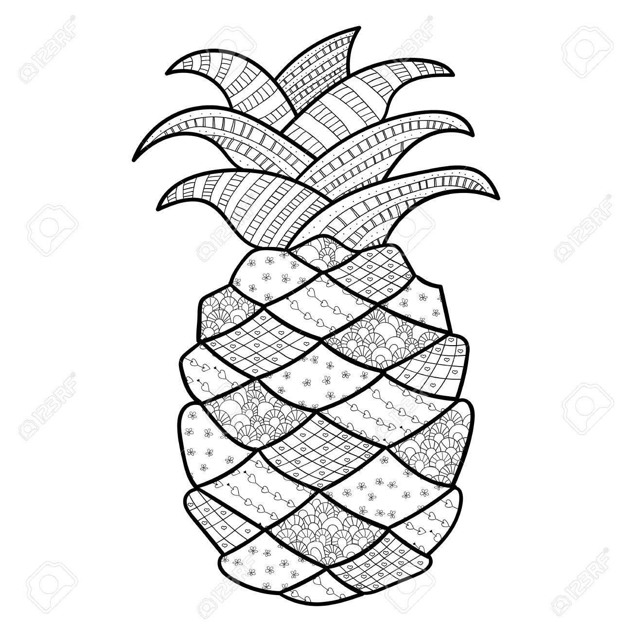 pineapple adult coloring page zentangle inspired whimsical line art vector illustration stock vector - Coloring Page Zentangle