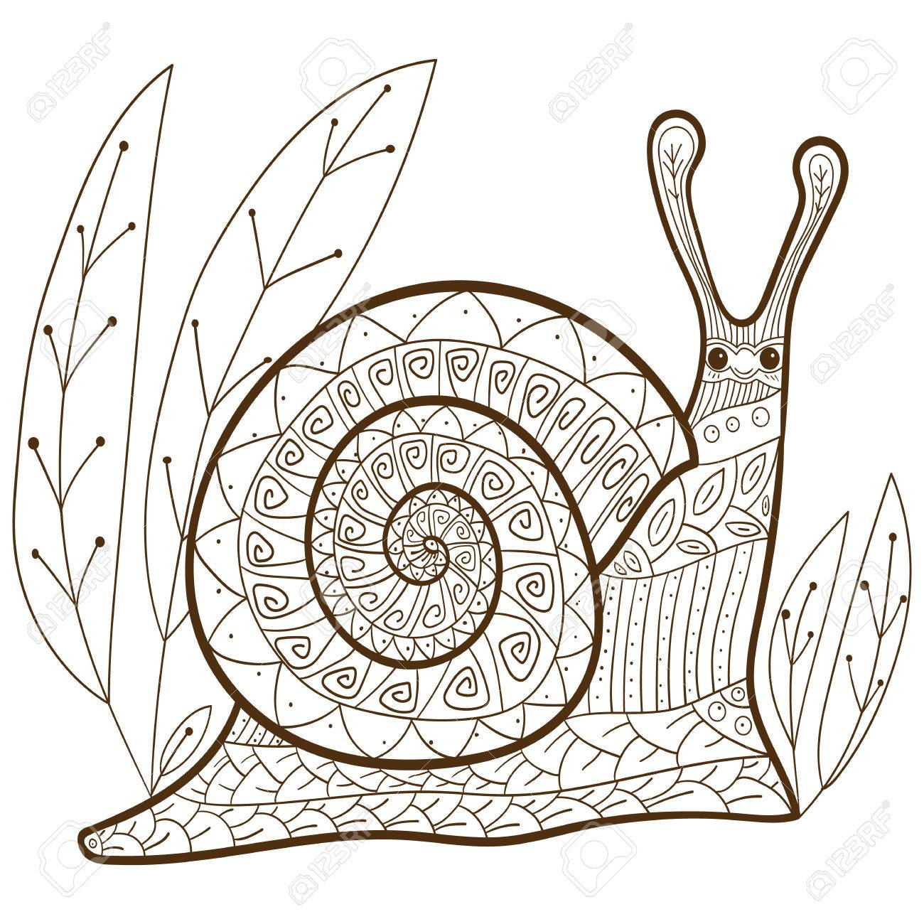 Cute Snail Adult Coloring Book Page. Happy Smiling Snail In Forest ...