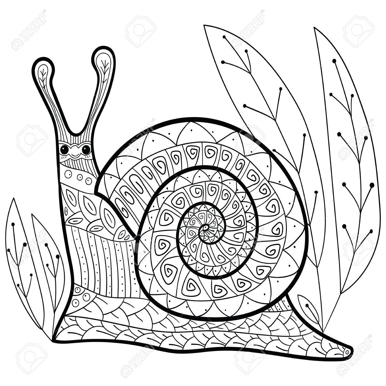 Mignon Page De Livre De Coloriage Escargot Adulte Escargot Sourire Heureux Dans La Foret Art De La Ligne Luxurieuse Illustration Vectorielle Clip Art Libres De Droits Vecteurs Et Illustration Image 57990695