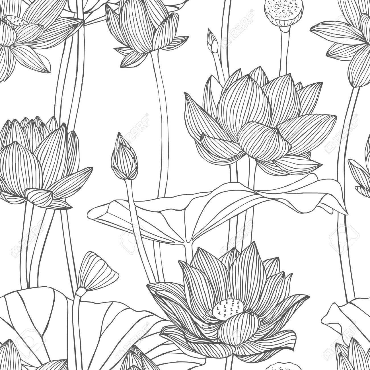 Lineal Sin Patrón - Flor De Loto. Ilustraciones Vectoriales, Clip ...