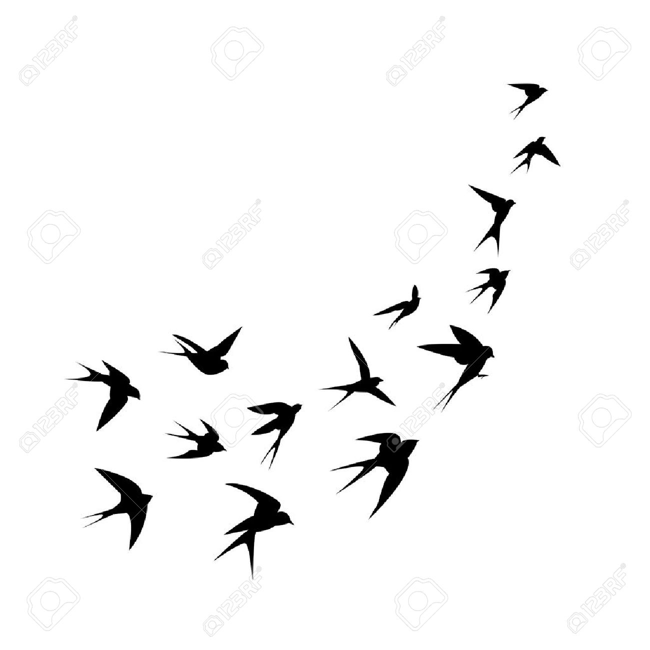 A flock of birds swallows go up. Black silhouette on a white background. Vector illustration. - 43470491
