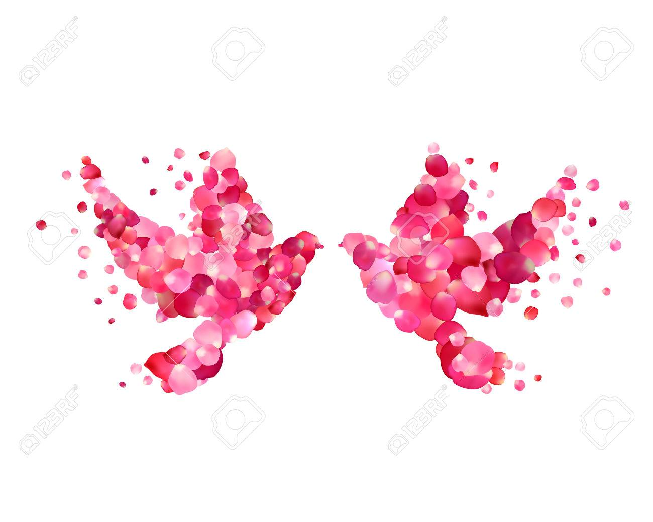 Love. Vector Wedding Illustration - Dove Couple Of Rose Petals ...