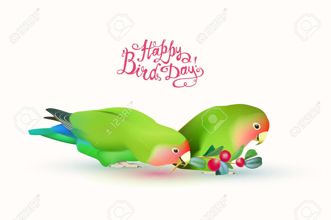 Image result for happy bird day