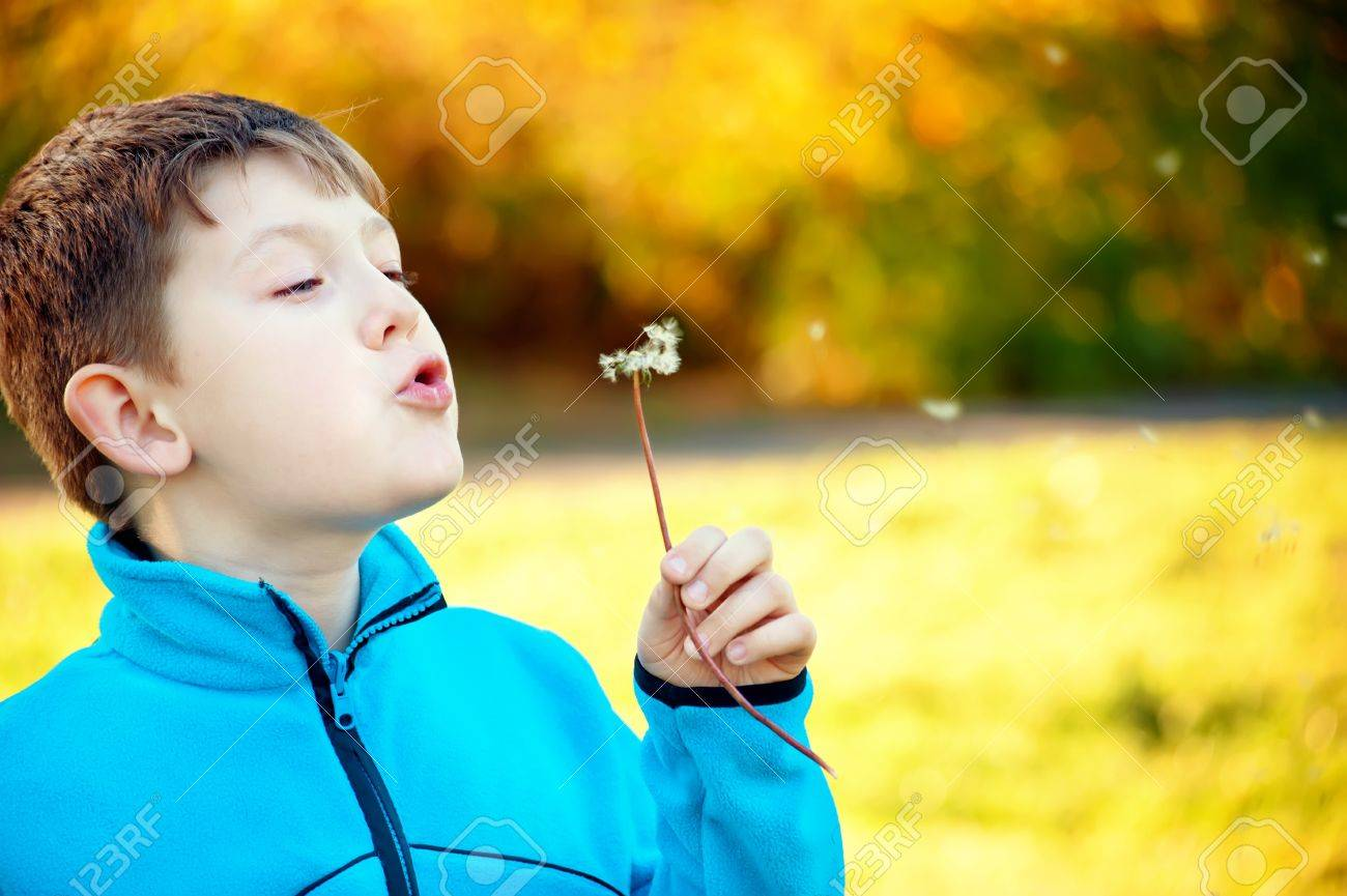 Child blowing Dandellion seed Stock Photo - 16607901