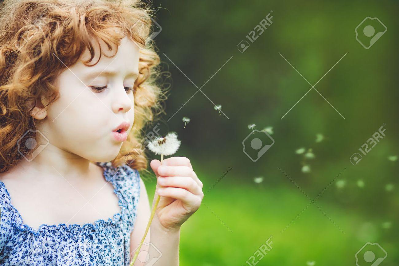 little curly girl blowing dandelion - 34782399