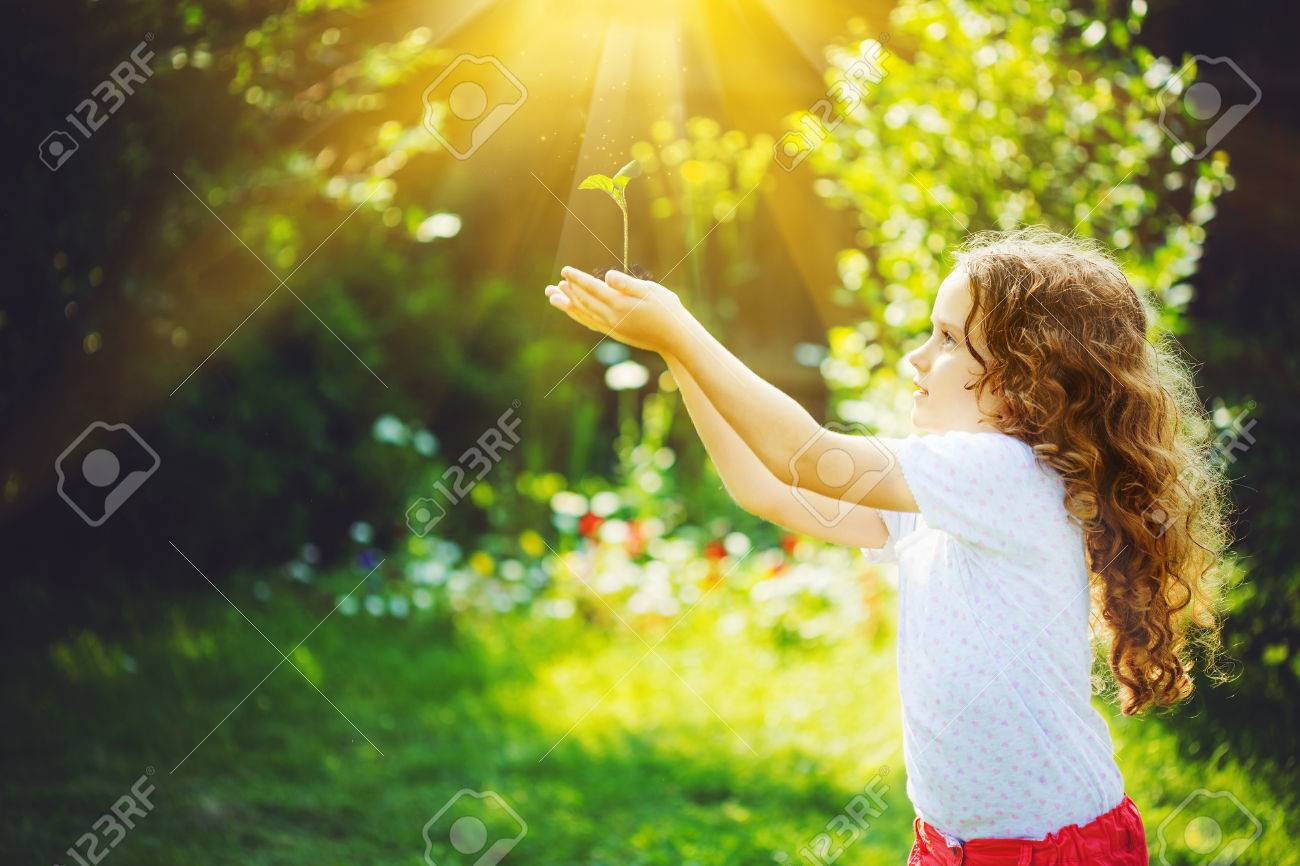 Little girl holding young green plant in sunlight. Ecology concept. Background toning to instagram filter. - 50463320