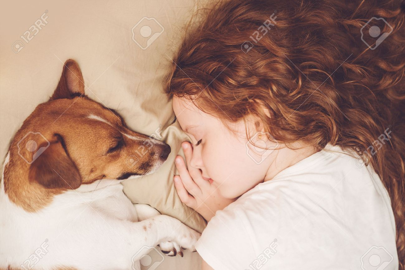Sweet curly girl and jack russell dog is sleeping in night. Standard-Bild - 83799935