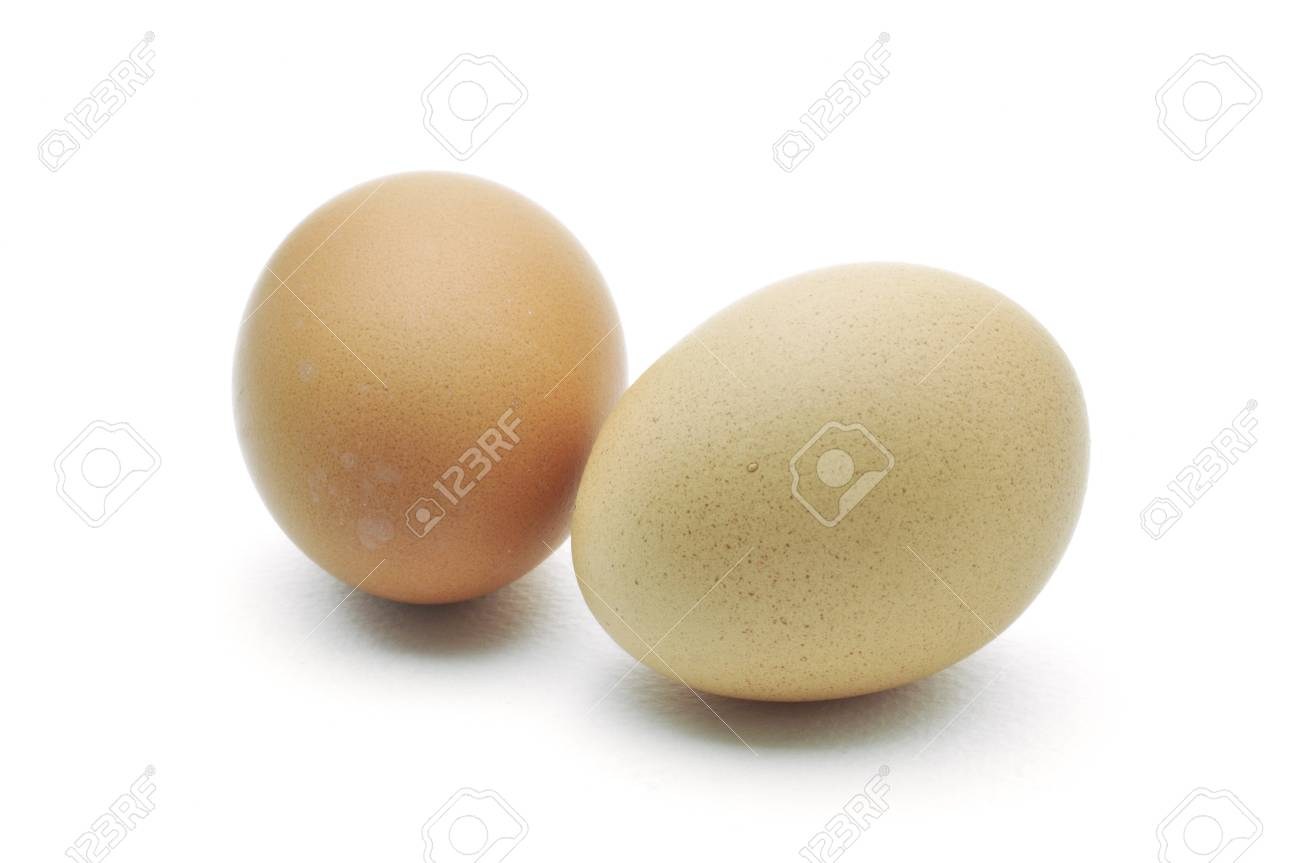 eggs are isolated on a white background Stock Photo - 15219231