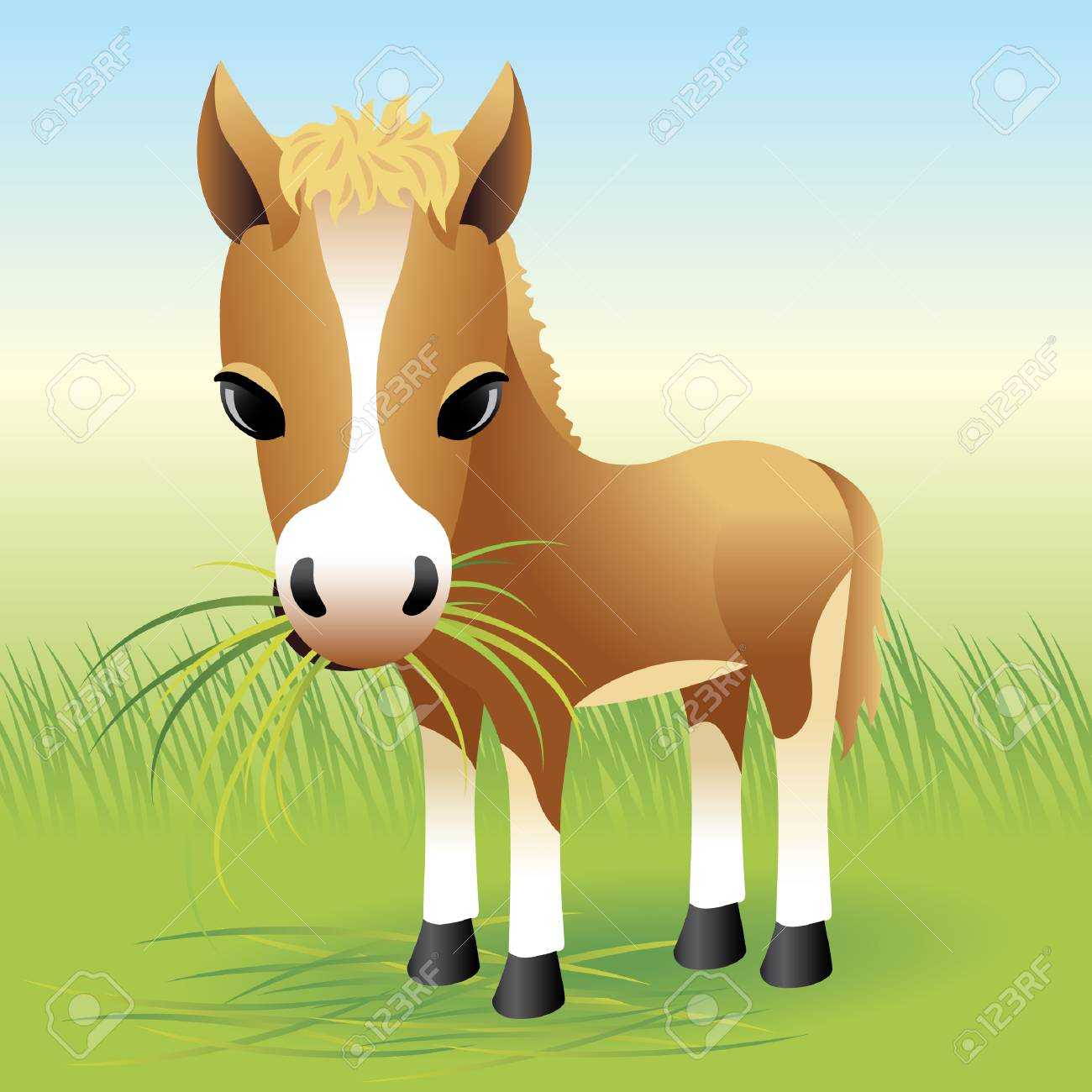 Baby Animal collection: Horse - 4264043