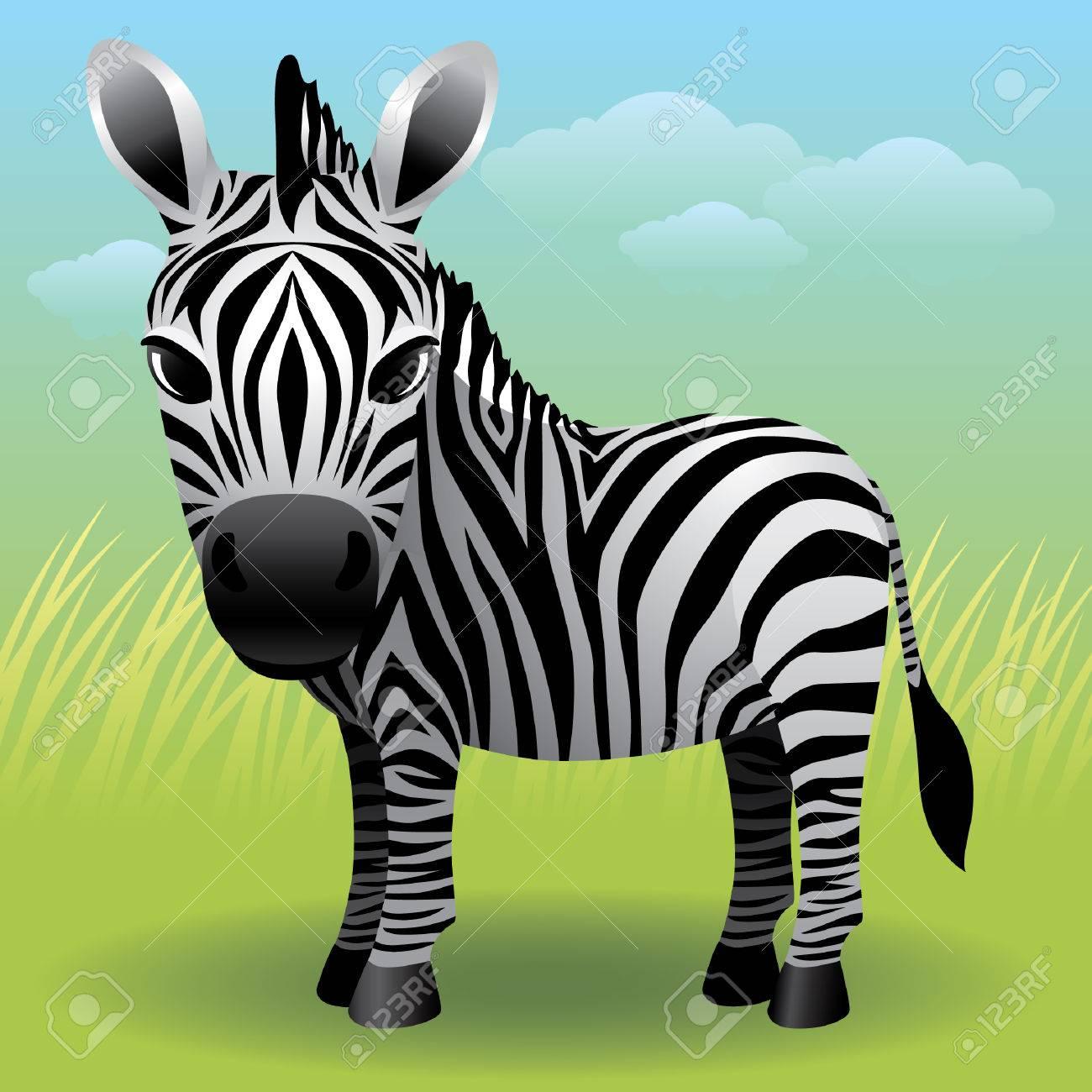 Baby Animal collection: Zebra Stock Vector - 4264042